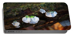 Portable Battery Charger featuring the photograph Natures Ruffles - Cascade Wi by Mary Machare