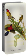 Nectarinia Gouldae Portable Battery Charger