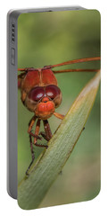 Neon Skimmer, Libellula Croceipennis Portable Battery Charger