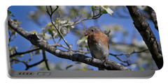 Portable Battery Charger featuring the photograph Nest Building by Douglas Stucky