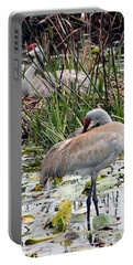 Nesting Sandhill Crane Pair Portable Battery Charger