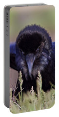 Nevermore Portable Battery Charger by Todd Kreuter