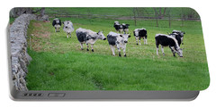 Portable Battery Charger featuring the photograph New England Spring Pasture Square by Bill Wakeley