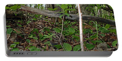 New Life In The Undergrowth Of The Forest Portable Battery Charger