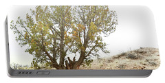 Portable Battery Charger featuring the photograph New Mexico Desert Southwest Tree by Andrea Hazel Ihlefeld