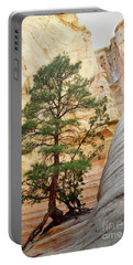 New Mexico Tent Rocks Slot Canyon Tree Landscape Portable Battery Charger by Andrea Hazel Ihlefeld