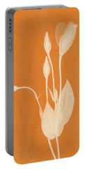 New Openings In Apricot Portable Battery Charger