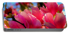 New Orleans In The Dead Of Winter Spring Japanese Magnolias Portable Battery Charger by Michael Hoard