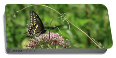 Male American Swallowtail Papilio Polyxenes Portable Battery Charger