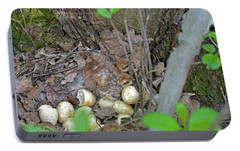 Newly Hatched Ruffed Grouse Chicks Portable Battery Charger by Asbed Iskedjian