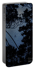 Portable Battery Charger featuring the photograph Night Banana Spider by Megan Dirsa-DuBois