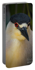 Night Heron Portrait Portable Battery Charger by Mitch Shindelbower