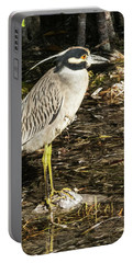 Portable Battery Charger featuring the photograph Night Heron Standing On A Rock In Key West by Bob Slitzan