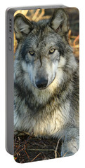 Portable Battery Charger featuring the photograph Noble Lupine by Shari Jardina