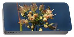 Nodding Onion Portable Battery Charger