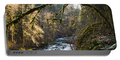 Portable Battery Charger featuring the photograph Nooksack River by Yulia Kazansky