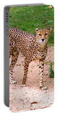 North African Cheetah Portable Battery Charger