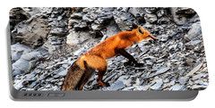 North American Red Fox Portable Battery Charger by Daniel Hebard