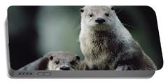 North American River Otter Lontra Portable Battery Charger