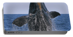 North Atlantic Right Whale Breaching Portable Battery Charger