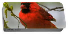 North Carolina Cardinal Portable Battery Charger