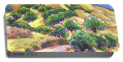 North Gate Road, Mount Diablo Portable Battery Charger