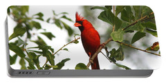 Northern Cardinal - In The Wind Portable Battery Charger by Travis Truelove
