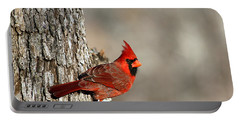 Northern Cardinal On Tree Portable Battery Charger