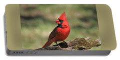 Portable Battery Charger featuring the photograph Northern Cardinal Portrait by Sheila Brown