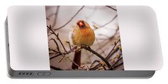 Portable Battery Charger featuring the photograph Northern Female Cardinal Pose by Terry DeLuco