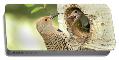 Northern Flicker Feeding Baby Portable Battery Charger