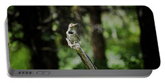 Northern Flicker Portable Battery Charger