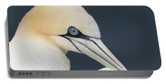 Northern Gannet At Troup Head - Scotland Portable Battery Charger