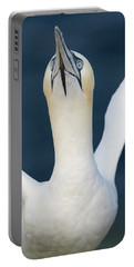 Northern Gannet Stretching Its Wings Portable Battery Charger
