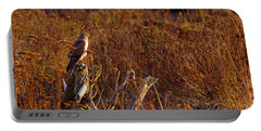 Portable Battery Charger featuring the photograph Northern Harrier At Sunset by Sharon Talson