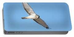 Portable Battery Charger featuring the photograph Northern Harrier by Tam Ryan