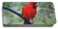 Northern Male Red Cardinal Bird Portable Battery Charger