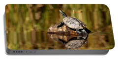 Northern Map Turtle Portable Battery Charger