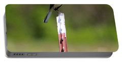 Portable Battery Charger featuring the photograph Northern Mockingbird Posing  by Ricky L Jones
