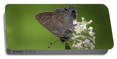 Northern Oak Hairstreak Portable Battery Charger
