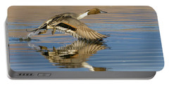Northern Pintail With Reflection Portable Battery Charger