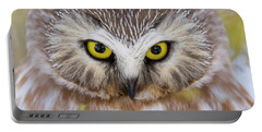 Portable Battery Charger featuring the photograph Northern Saw-whet Owl Portrait by Mircea Costina Photography