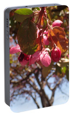 Portable Battery Charger featuring the photograph Not Far From The Tree by Christina Verdgeline