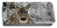 Portable Battery Charger featuring the photograph Not Happy - 365-279 by Inge Riis McDonald