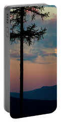Portable Battery Charger featuring the photograph Not Quite Clearcut by Albert Seger