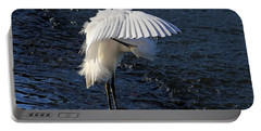 Portable Battery Charger featuring the photograph Not Under Here - Birds - Snowy Egret by HH Photography of Florida