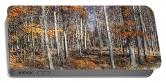 Portable Battery Charger featuring the photograph November Forest by Betsy Zimmerli