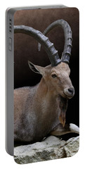 Nubian Ibex Portrait Portable Battery Charger
