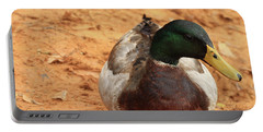 Portable Battery Charger featuring the photograph Number 17 by Kim Henderson