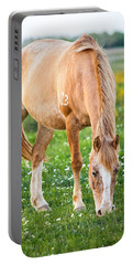 Portable Battery Charger featuring the photograph Number 403 by Melinda Ledsome